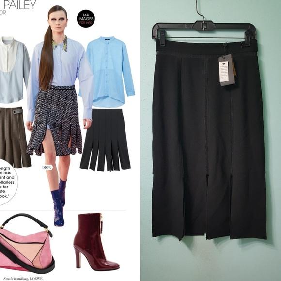 8ec2096fbb01 ABS Allen Schwartz Skirts | Nwt Desk To Dinner Abs Car Wash Skirt ...